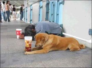 the-beggar-and-his-dog