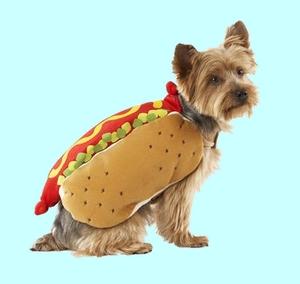 broodje hond