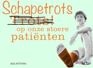 Schapetrots