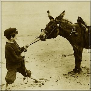 Boys Pushing & Pulling Stubborn Mule